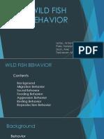 Wild Fish Behavior