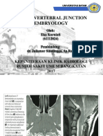 Craniovertebral Junction Embryology