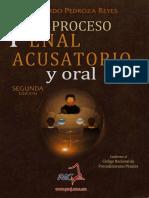 El Proceso Penal Acusatorio y Oral_PEDROZA REYES L_PP 61-96