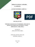 Resumen de Tesis MSNF