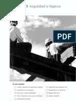 prm-1-seguridadehigiene-170411165128.pdf
