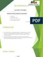 Presentación-Brocoli-Orgánico