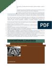 Conheça o Processo Básico Para Se Formar Uma Associação e Quais as Etapas