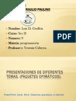 Diapositiva Luis