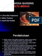 DD mata merah (2)