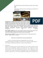 ikan Katadromus