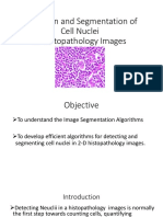 Detection and Segmentation of Cell