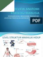 Review Anatomi Fisiologi Manusia