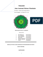 Anfisman1(Kel7) Anatomi Sistem Muskular