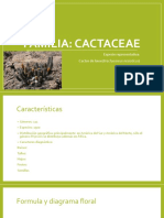 Familias biologia vegetal.pptx