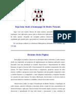 Redes Neurais.pdf