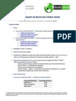 Convocatoria-I-PAEC-OEA-FondoVerde2018.pdf