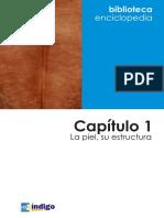 Capitulo_01_Estructura_de_la_piel.pdf