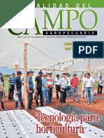 Campo - Año 17 - Numero 197 - Noviembre 2017 - Paraguay - Portalguarani