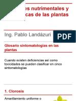 Fuciones_Nutrimentales_Examen_