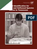Wood Identification.pdf