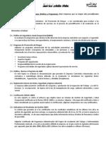 Pauta de Evaluación Prevención de Riesgos_2012 (2)