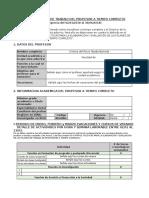 Descargar Este Archivo - F-O-FPP-01 Plan Semestral de Trabajo Del Profesor a Tiempo Completo (v2) 2018-01 - NA Correo1