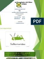 Proyecto Del Sillon