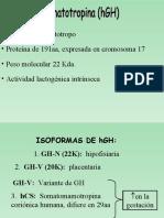 Somatotropina-Neurohipofisis1