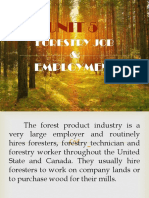 Forestry Job