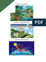 Importancia Del Ecosistema Imagenes (1)