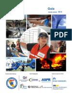 HICS Guidebook 2014 10.en.es