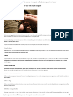 9 ideias para rezar o terço quando você está muito ocupado _ Jovens Sarados.pdf