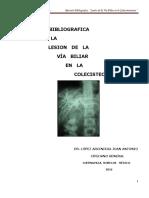 3. Lesion de La via Biliar en La Colecistectomia 2016