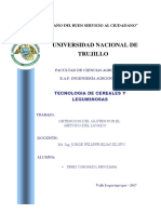 Obtencion Del Guten - Copia