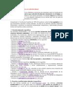 La Constitución Española y Su Relación Laboral