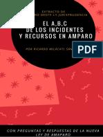 ABC Recursos e Incidentes en El Juicio de Amparo