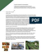 Actividad Economica de Centroamerica