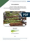 274382412-Ficha-Ambiental-Mae-Maricultura-Macroalgas-en-Ecuador.pdf