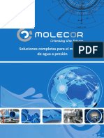 01.06. Coorporativo Molecor