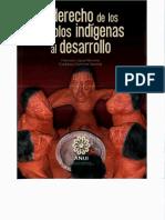 Derecho Delos Pueblos Indigenas