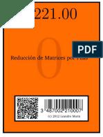 xtema022100.pdf