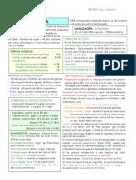 cancer colorrectoanal.pdf