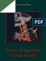 Guiones de Angiologia y Cirugia Endovascular