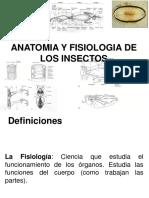 Fisiologia de Insectos 2014