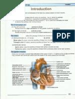 CardioLOGY-PHYSIOLOGY