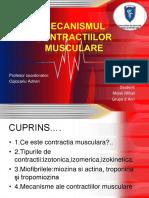 Mecanismul Contractiilor Musculare
