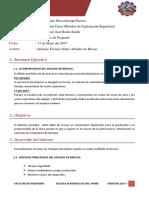 Formato de Informe TA[2]
