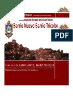 Metodologiìa BNBT.2014.pdf