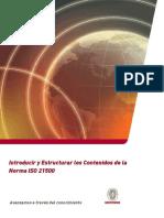 Auditor Interno 21500.pdf