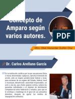 Concepto de Amparo Según Varios Autores.