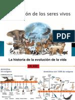 30183487-La-Evolucion-de-los-seres-vivos.ppt