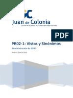 PR02-1 Vistas y sinónimos.docx