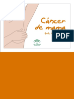 guía cáncer mama.pdf