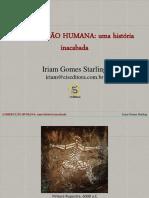 História Da Dissecação Humana